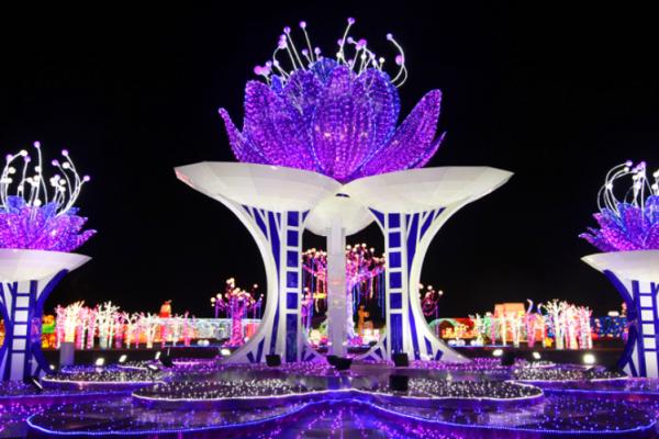 The Kingdom Magical Flower Lantern